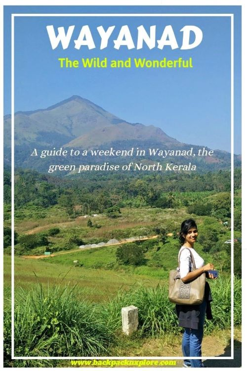 Wayanad Itinerary - A Comprehensive Travel Guide to visit the best places in Kerala, India. Tea gardens, coffee groves, lakes, mountains- it's truly a paradise.