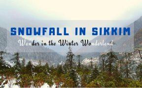 Snowfall in Sikkim - Winter Wonderland